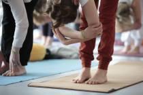 Yoga und Thai chi konferenz Münster 2014 2